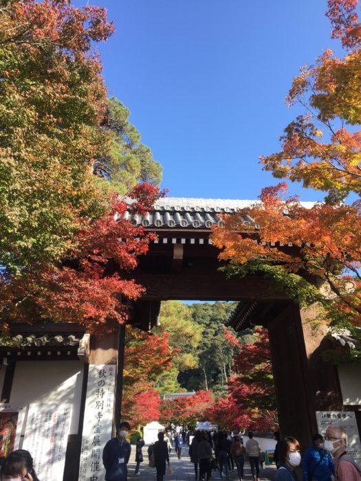 永観堂の正門