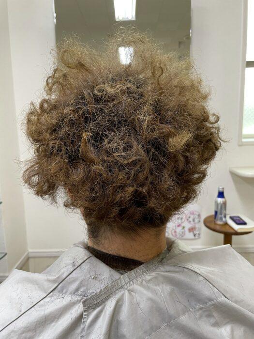 散髪前のボサボサ頭を後ろから撮影