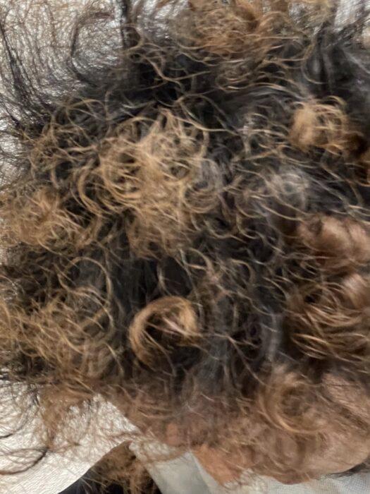 ギャランの髪型・・・パーマをやめて銀髪を目指す。