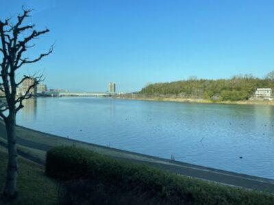 キレイな瀬田川の光景でもみて和むのも大事かもしれない。