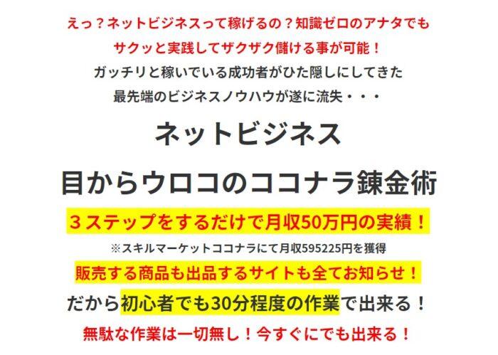 藤澤 真理/ネットビジネス 目からウロコのココナラ錬金術