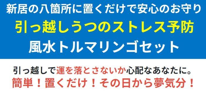 有限会社インテリアクレール/引越ストレス予防の風水DIYキット・トルマリンゴセット(風水鑑定マニュアル付き)